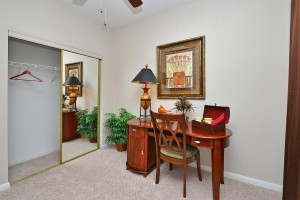Two bedroom apartments for rent in Midtown Houston