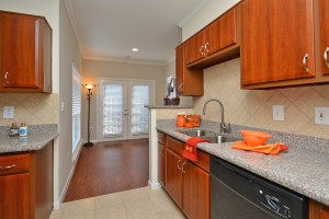 One bedroom apartments for rent in Midtown Houston